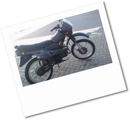 IMAGE 075